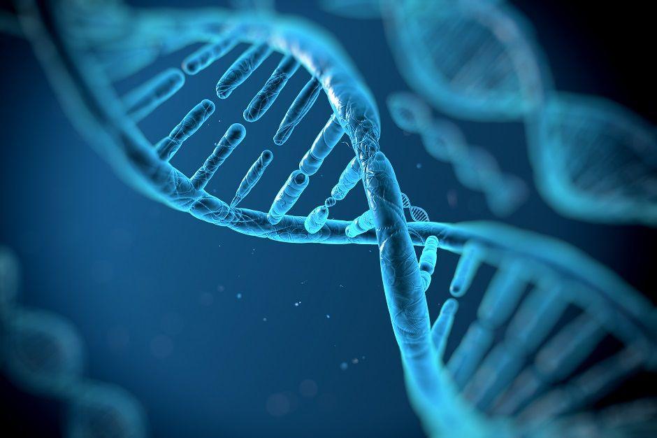 DNA-c